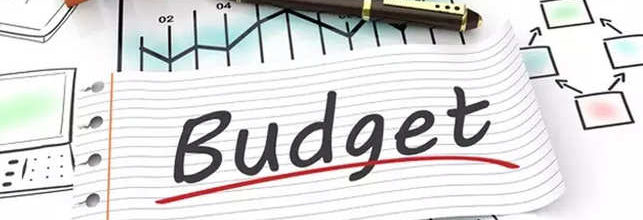 Draft budget and proposed precept for 2020-21